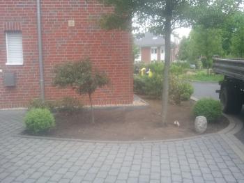 Vorgarten Vorher Bild