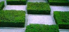 Zen-Garten angelegt