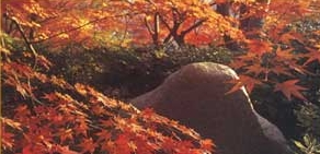 Zen-Garten mit Naturstein